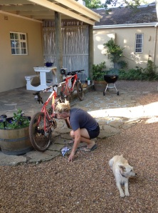 bike clean and braai action