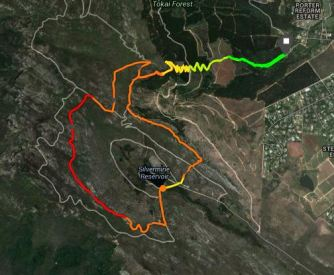 Tokai Silvermine trail run 260614