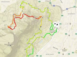 Two Ocean's Trail Run 22km